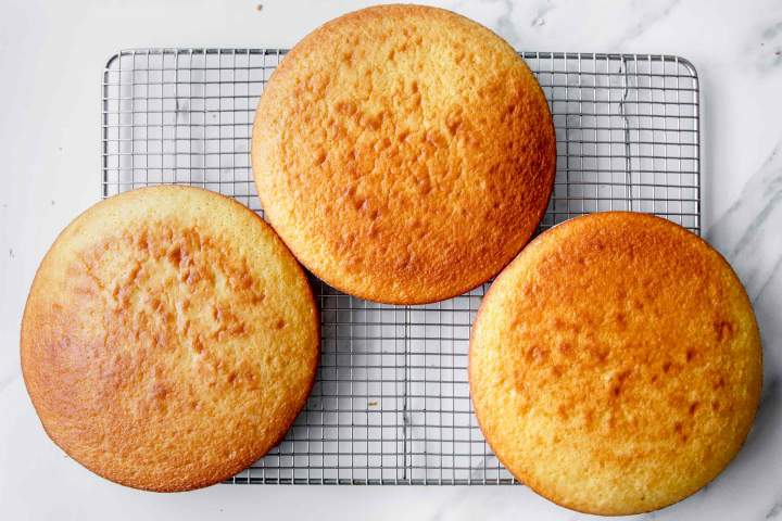 Baked sponge cake for Blackberry Nutella Cake